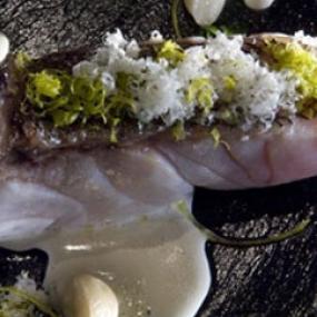 Receta mero con ortiguillas y salsa de lima paco roncero for Salsa de hierba luisa