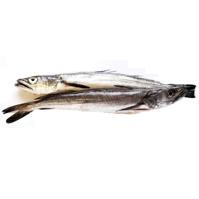 Pescadilla de ración