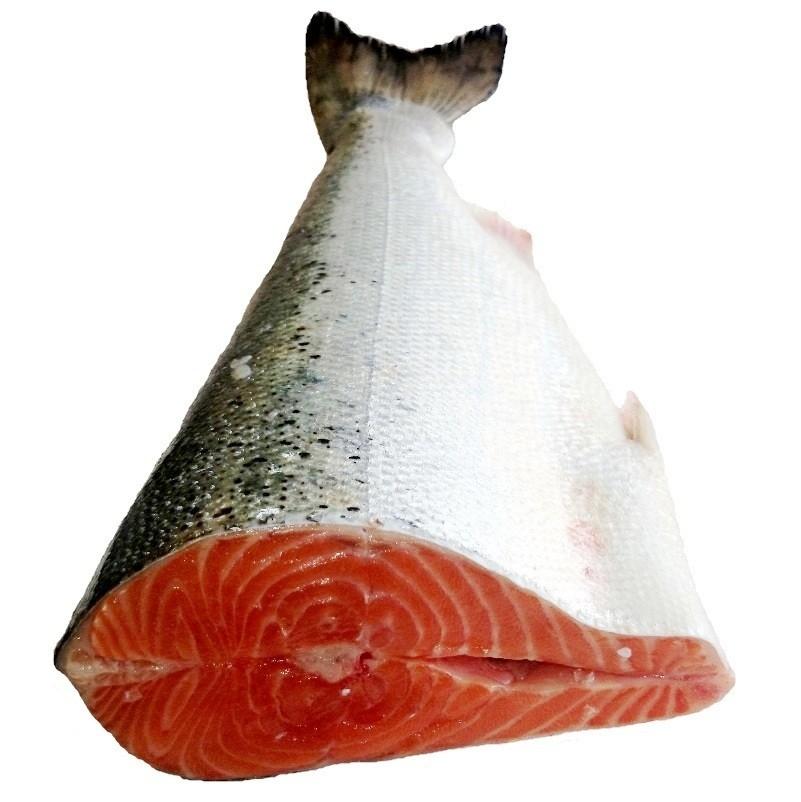 Salmón Pescados, características e información